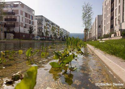 Městský rozvoj v pasivním standardu